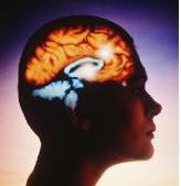 L'influence des nitrates sur le développement d'Alzheimer - Source de l'image:www.meschinohealth.com
