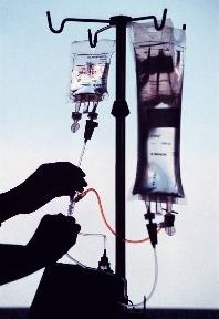 Québec : relance du débat sur l'euthanasie - Source de l'Image : http://jphmtl4141.files.wordpress.com/2008/09/euthanasie.jpg