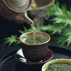 Du thé vert pour lutter contre la maladie d'Alzheimer ? - Source de l'Image : http://www.web-libre.org