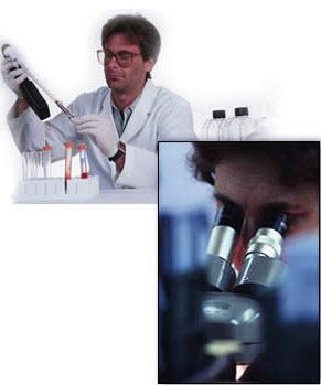 Les laboratoires pharmaceutiques s'unissent contre Alzheimer - Source de l'image : http://www.labo-saco.com/